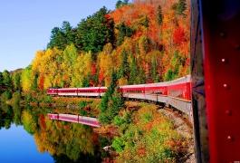 亚加华峡谷火车赏枫3天游